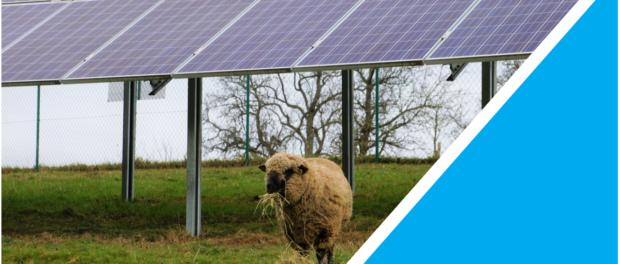 Agro-PV Fachdialog Energieregion